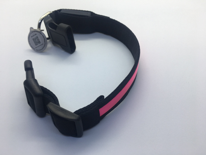 Dog collar led intelligent QR identifier